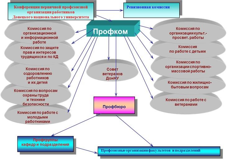 Структура ППОР ДонНУ (схема)